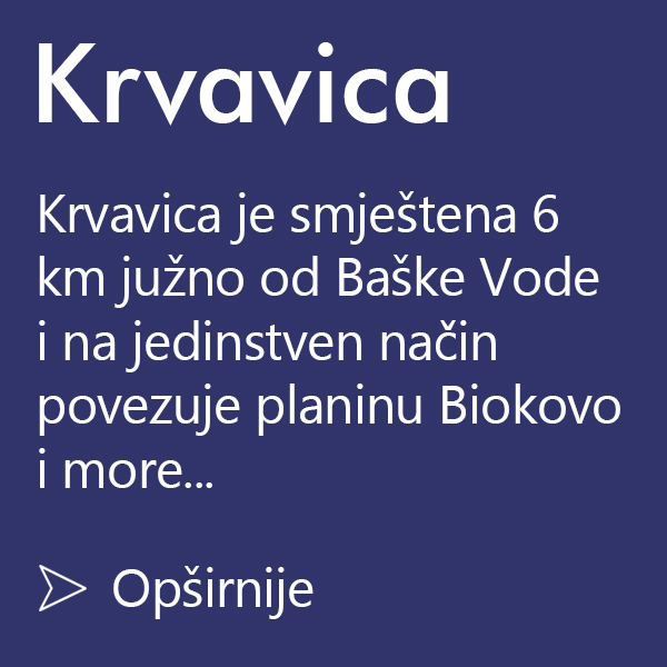 krvavica